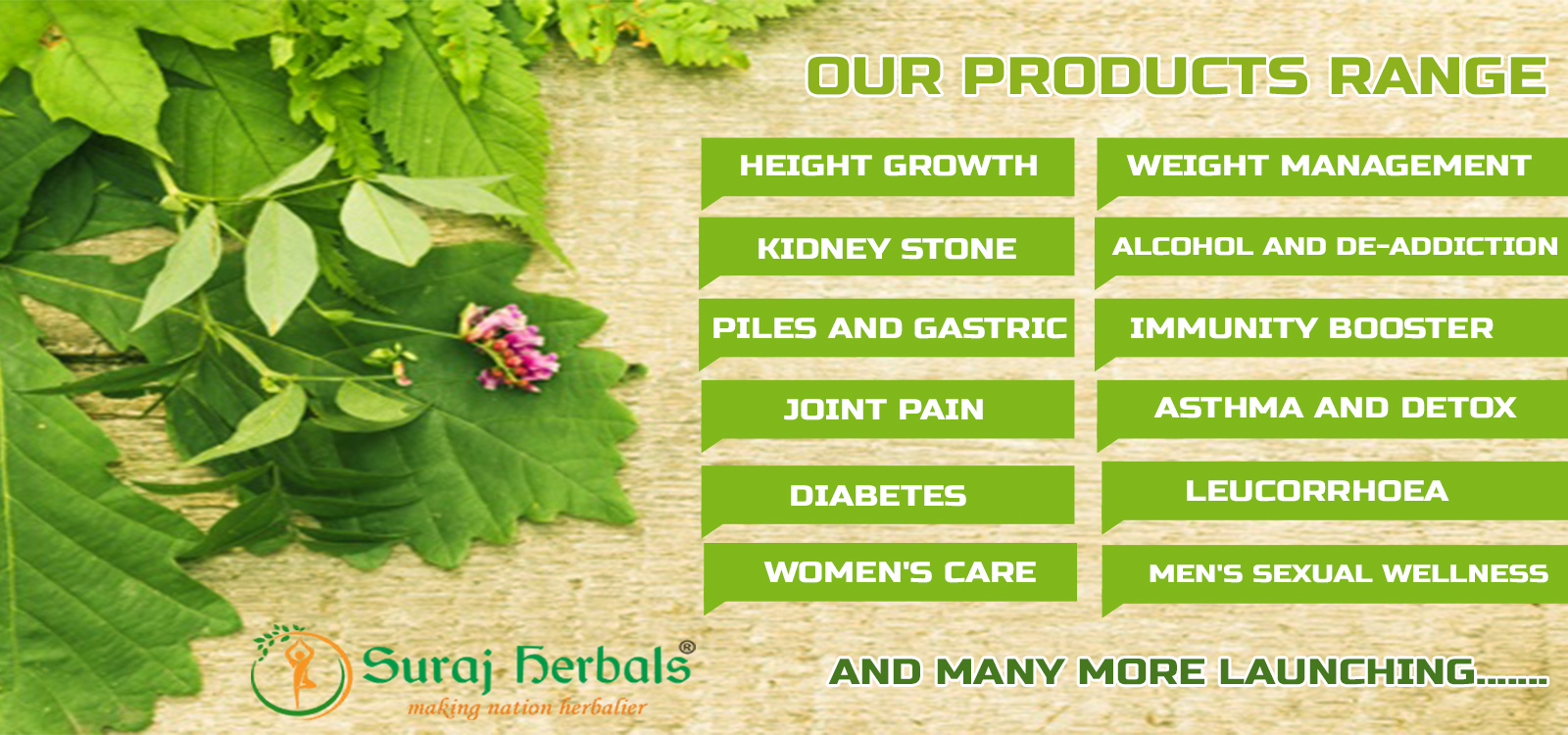 Herbal Products Manufacturer in India